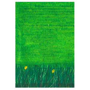 Grass - Gordon Coldwell